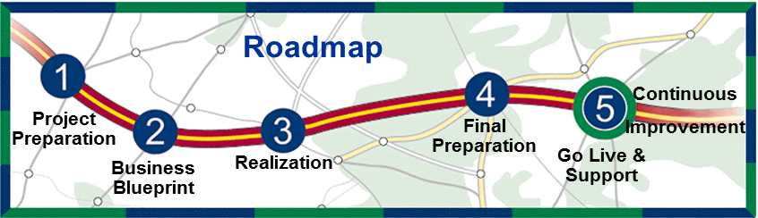 Insite group inc sap using a typical project roadmap below helps to illustrate where resite can provide benefit malvernweather Choice Image